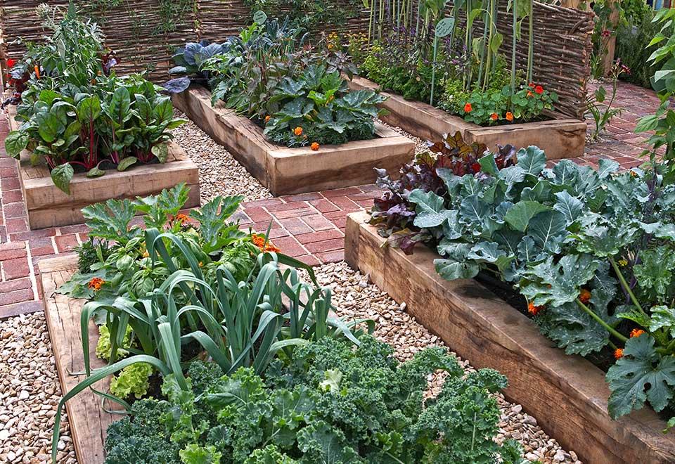 GardeningTipsForSpring
