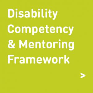 disability, competency and mentoring framework graphic